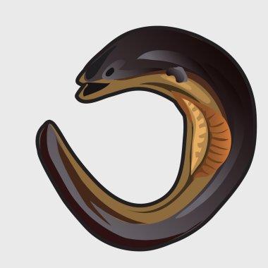 Cartoon fish european eel. Vector illustration