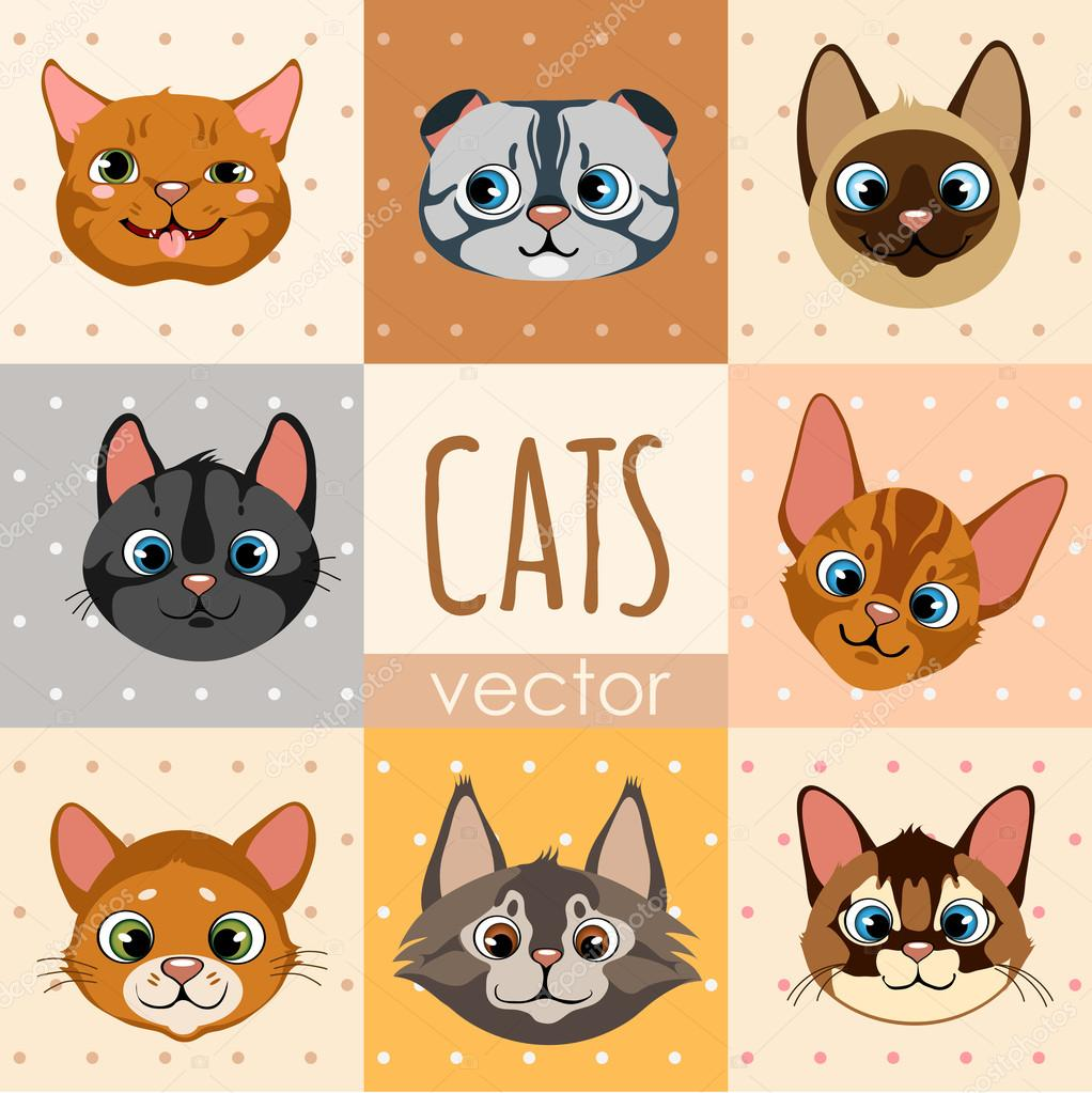 Conjunto De Ocho Caras De Gato De Dibujos Animados Coloridos