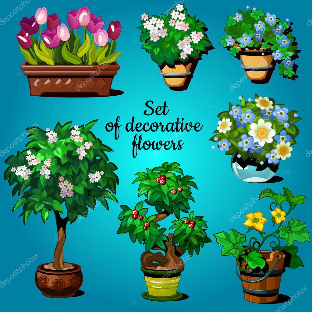 Decorativas para el hogar free esferas decorativas para for Plantas decorativas para el hogar