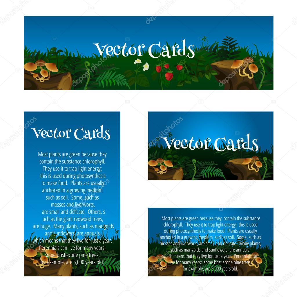 Set of cards with glade, mushrooms and berries