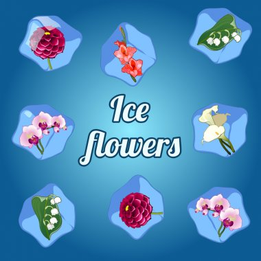 Beautiful flowers frozen in ice cubes