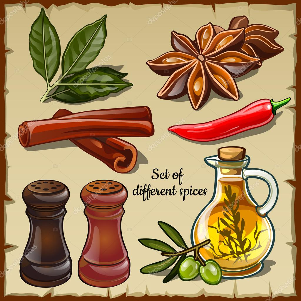 Set of different spices of the chef and foodie