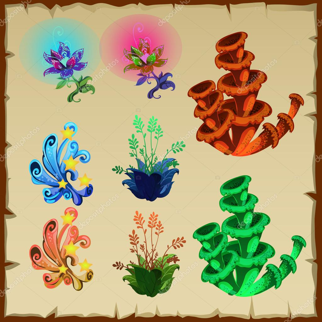 Bright collection of plants, flowers, and other natural gifts
