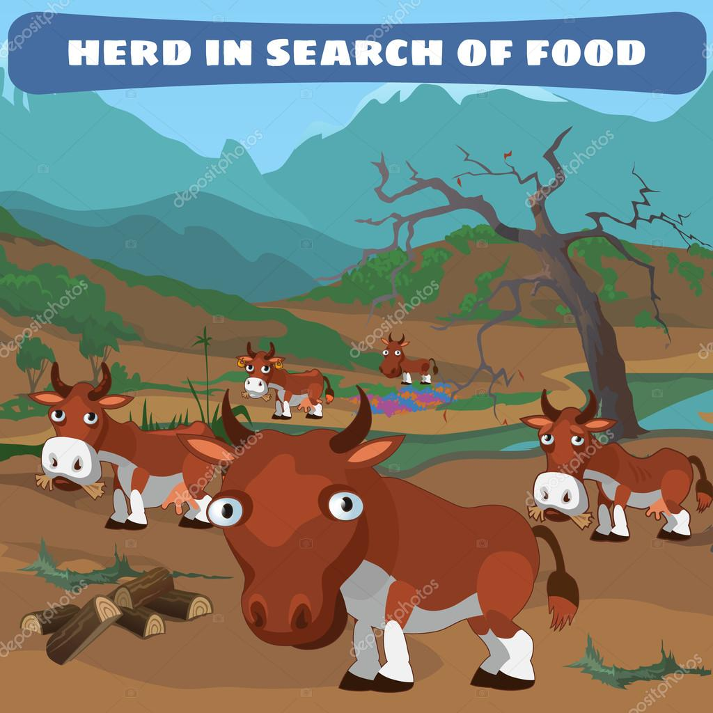 Herd of cows in search of food, natural landscape