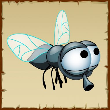 Gray fly with huge eyes, funny insect