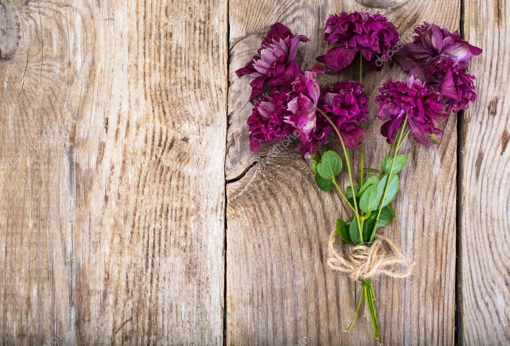 Purple Clematis Flower on Wooden Rustic Background