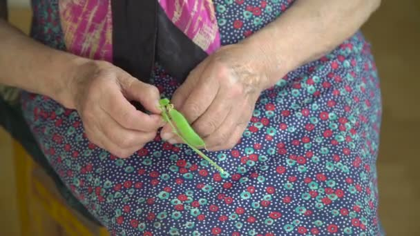 Old grandmothers hands shelling green peas in the village