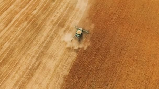 Aerial view of ripened wheat gathered in by modern combine harvester in 4K