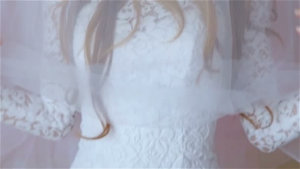 Krásná nevěsta ve svatebních šatech se závojem