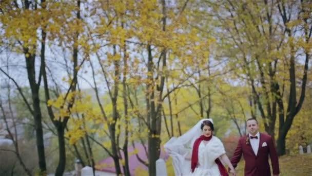 Married walking along autumn park