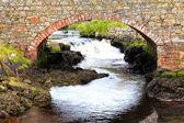 Starý kamenný most
