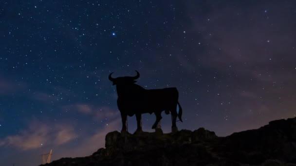 Night Sky Stars and Bull sign