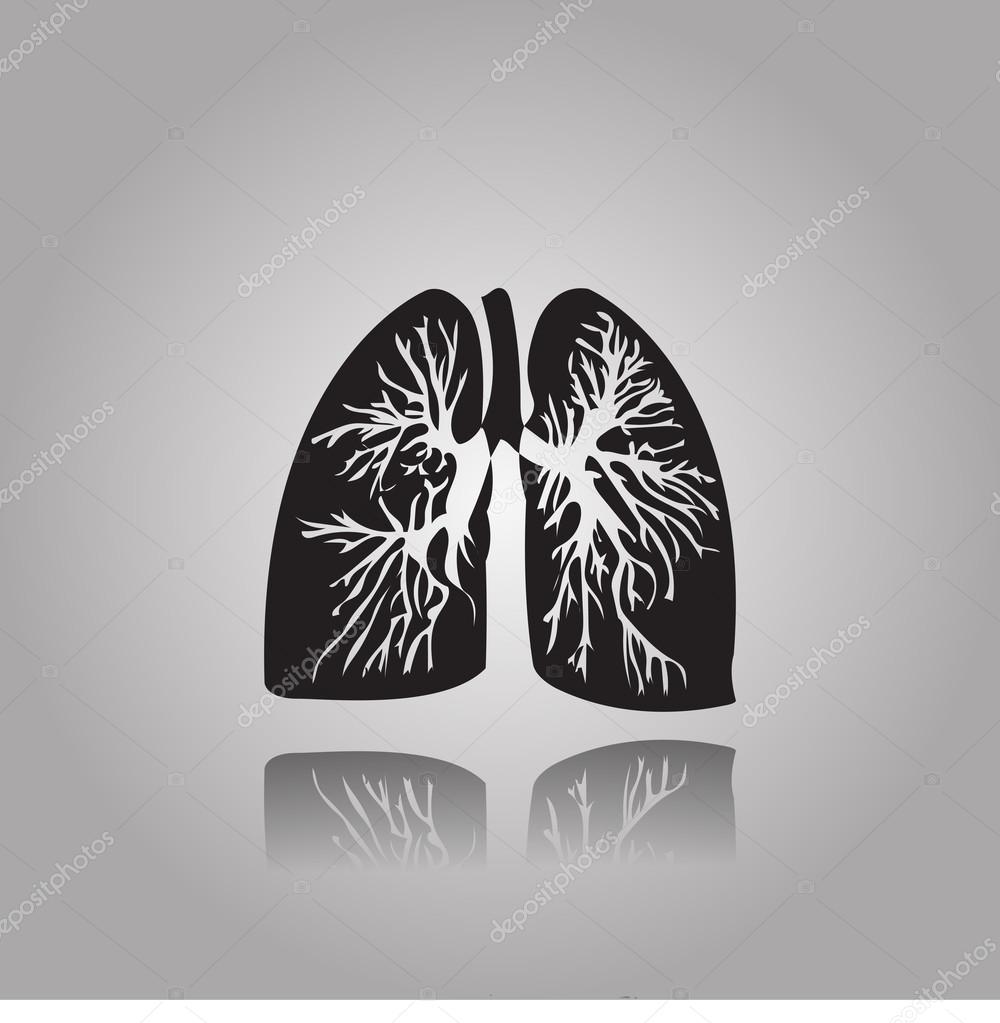 Abbildung der menschlichen Lunge mit Bronchialbaum — Stockvektor ...