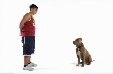 Teenage boy  with pit bull dog