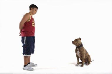 Teenage boy  with pit bull dog