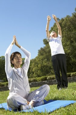 An elderly couple practicing yoga