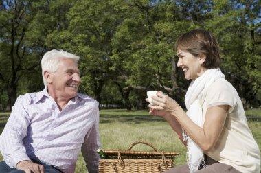 Beautiful woman on a picnic