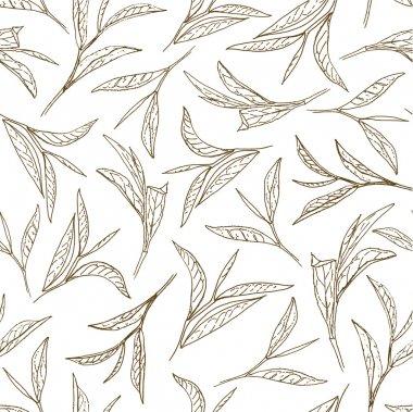 Tea leaves. Botanical style seamless pattern