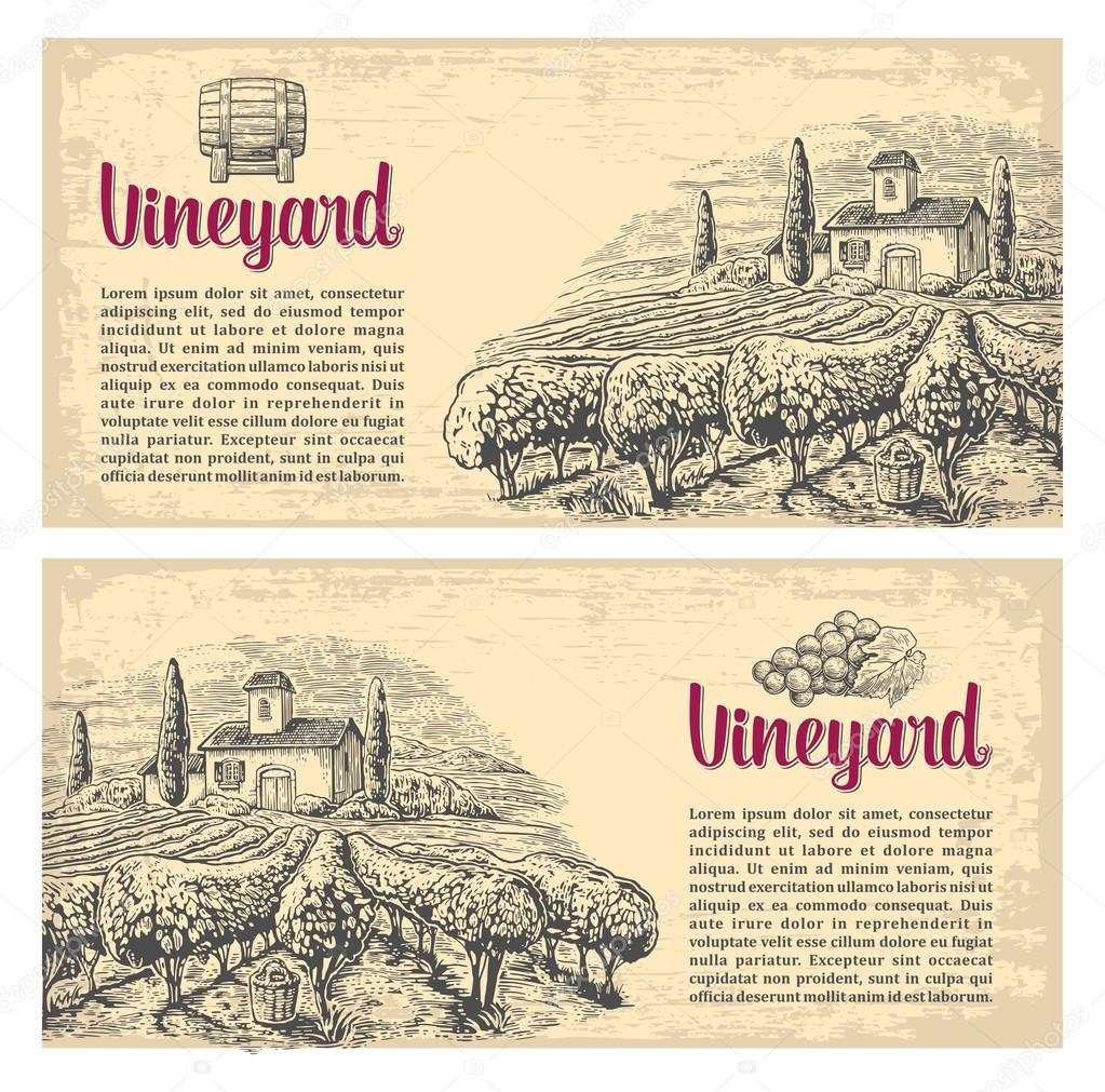 Rural landscape with villa, vineyard fields and hills. Vector engraving drawn vintage illustration. Old paper beige texture background. For label, poster, horizontal banner