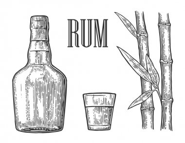 Glass and bottle of rum with sugar cane.