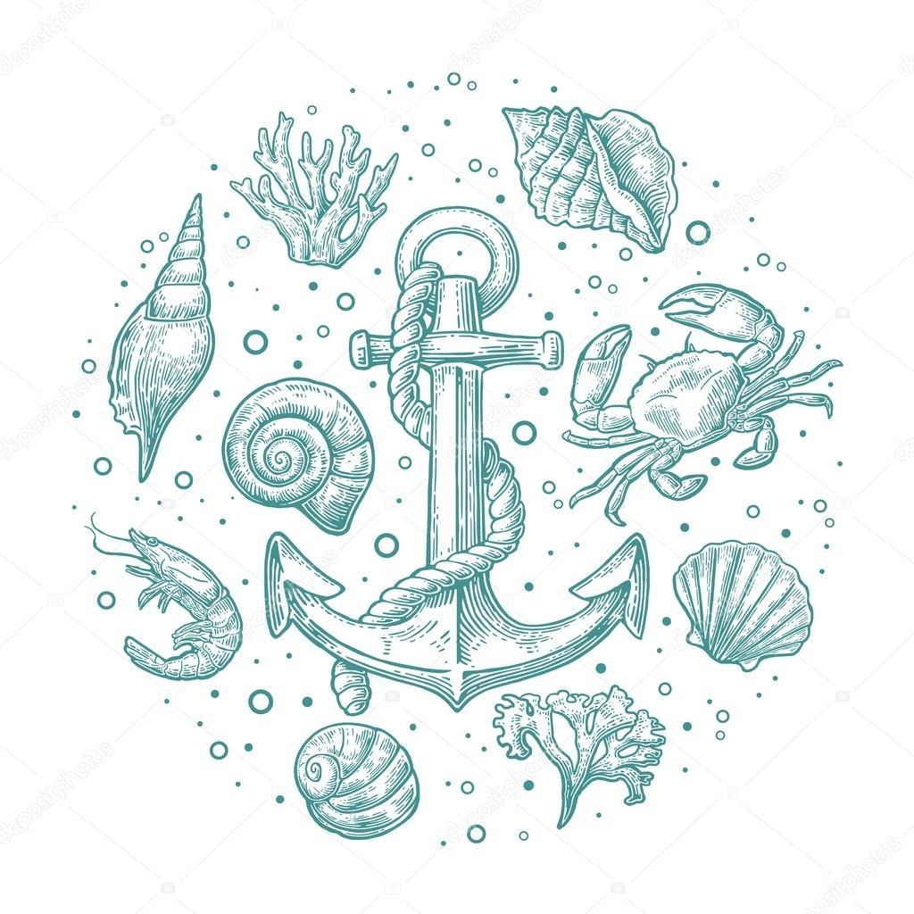 Etiket: Deniz kabukları