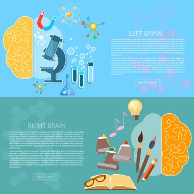 Left and right brain