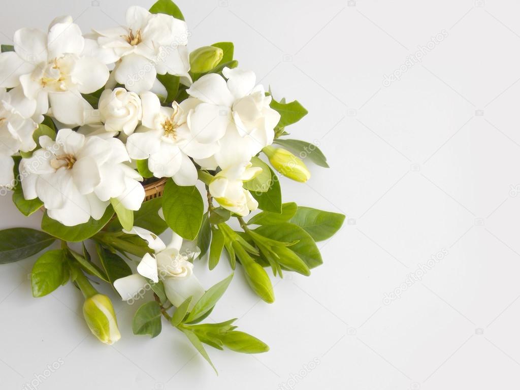 Beautiful white gardenia flower bouquet \u2014 Stock Photo