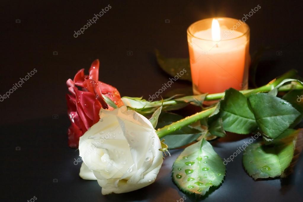"""Результат пошуку зображень за запитом """"две троянды"""""""