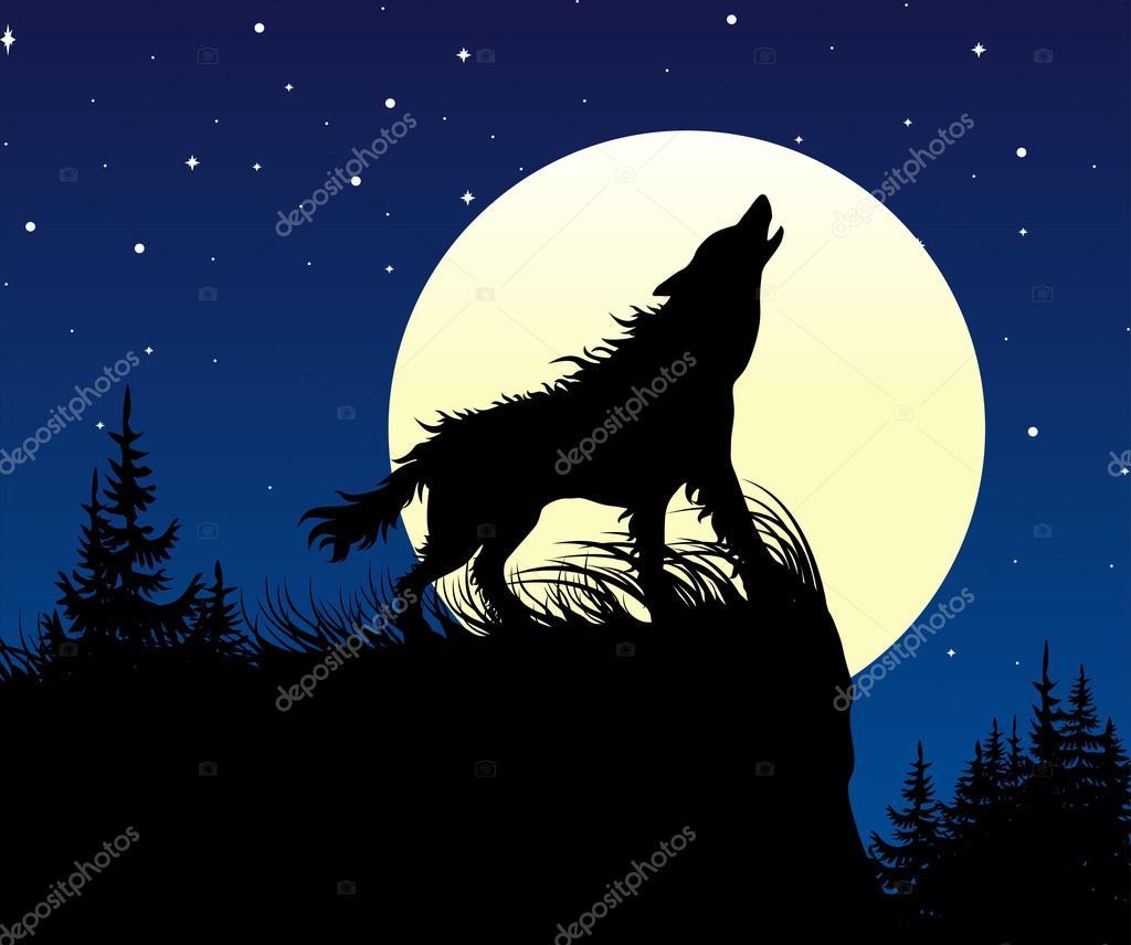 El Lobo Aullando En La Luna Llena En La Noche Archivo Imágenes