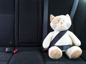 Stuffed toy with seat belt fastened