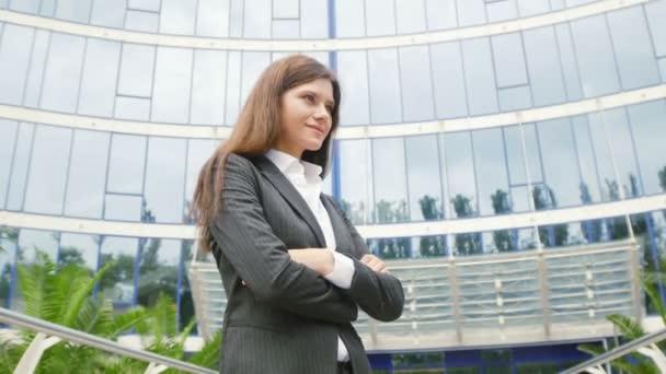 attractive successful businesswoman