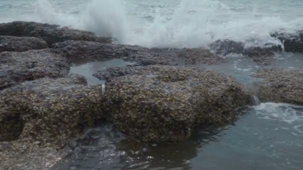 mořské vlny tříštící se o skály s cáknutí