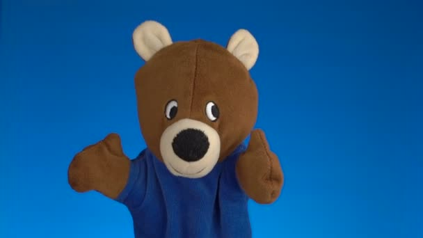 Teddy bear-kék háttér