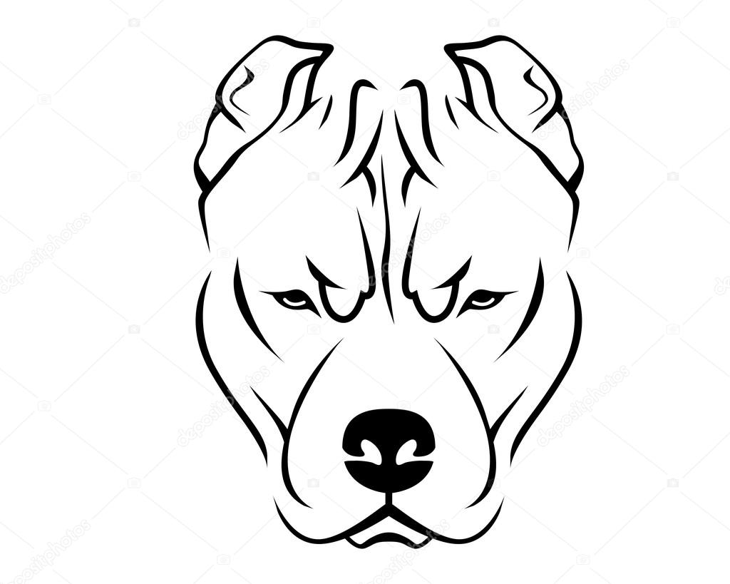 dog breed line art logo pit bull stock vector pit bull logo for vehicles pitbull logistics