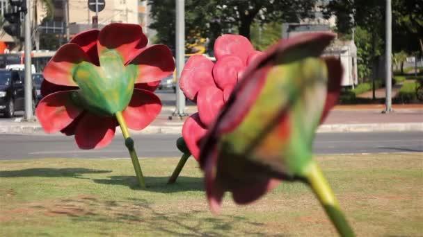 květiny v ulici Sao Paulo
