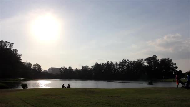 Několik dni v parku Ibirapuera