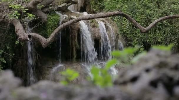Vodopád v parku. Vodopády v zeleném lese. HD 1920 x 1080
