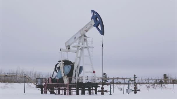 Work of oil pump jack on a oil field.  Perfect for shots requiring energy, oil, enegy policy.