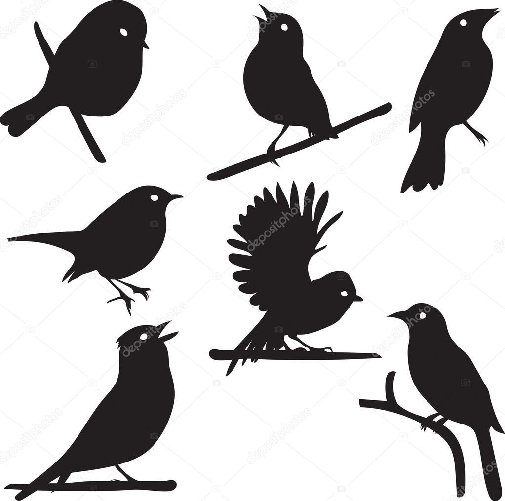 Птицы на ветке силуэт 6