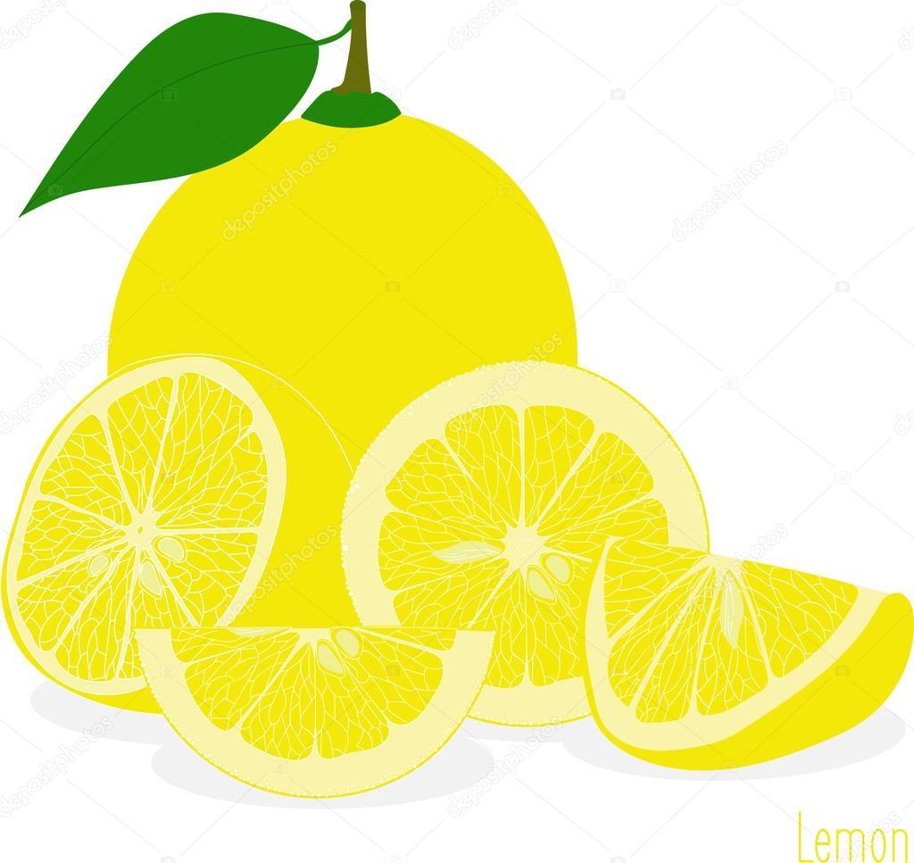 レモン スライス、透明な背景のベクトル イラスト集 — ストックベクター
