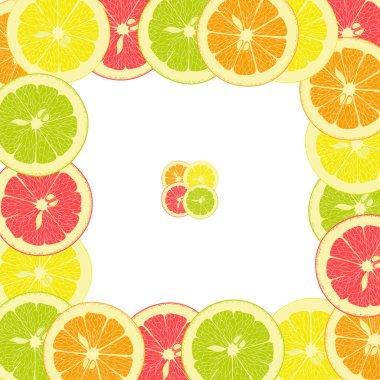 square frame from pieces of lemon, orange, lime, grapefruit on a transparent background