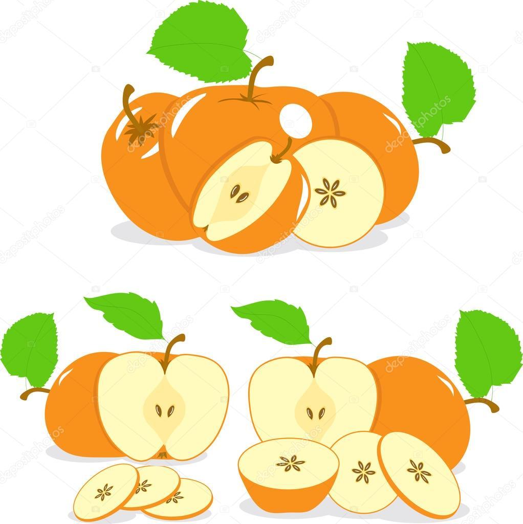Rodajas de manzanas de color naranja, colección de ilustraciones ...