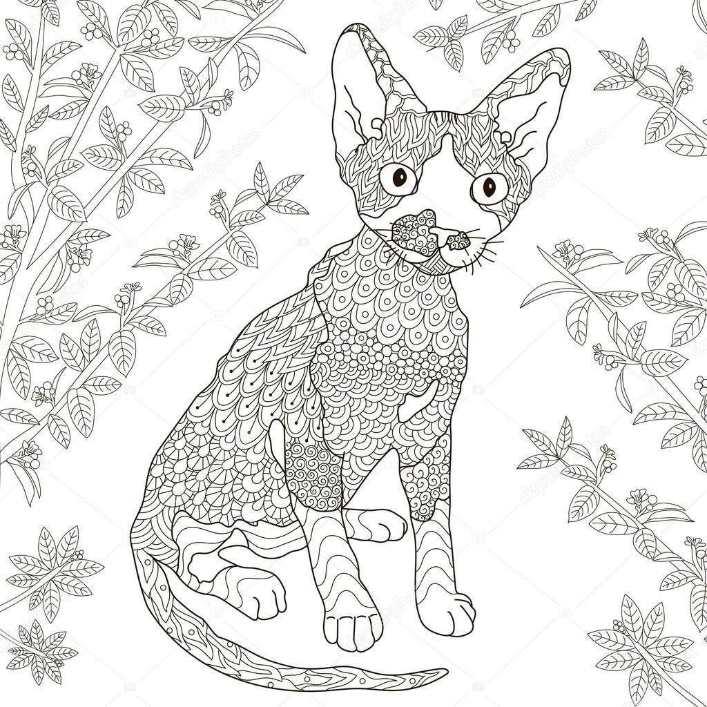 Zentangle estilizado devon rex gatos para colorear página — Vector ...