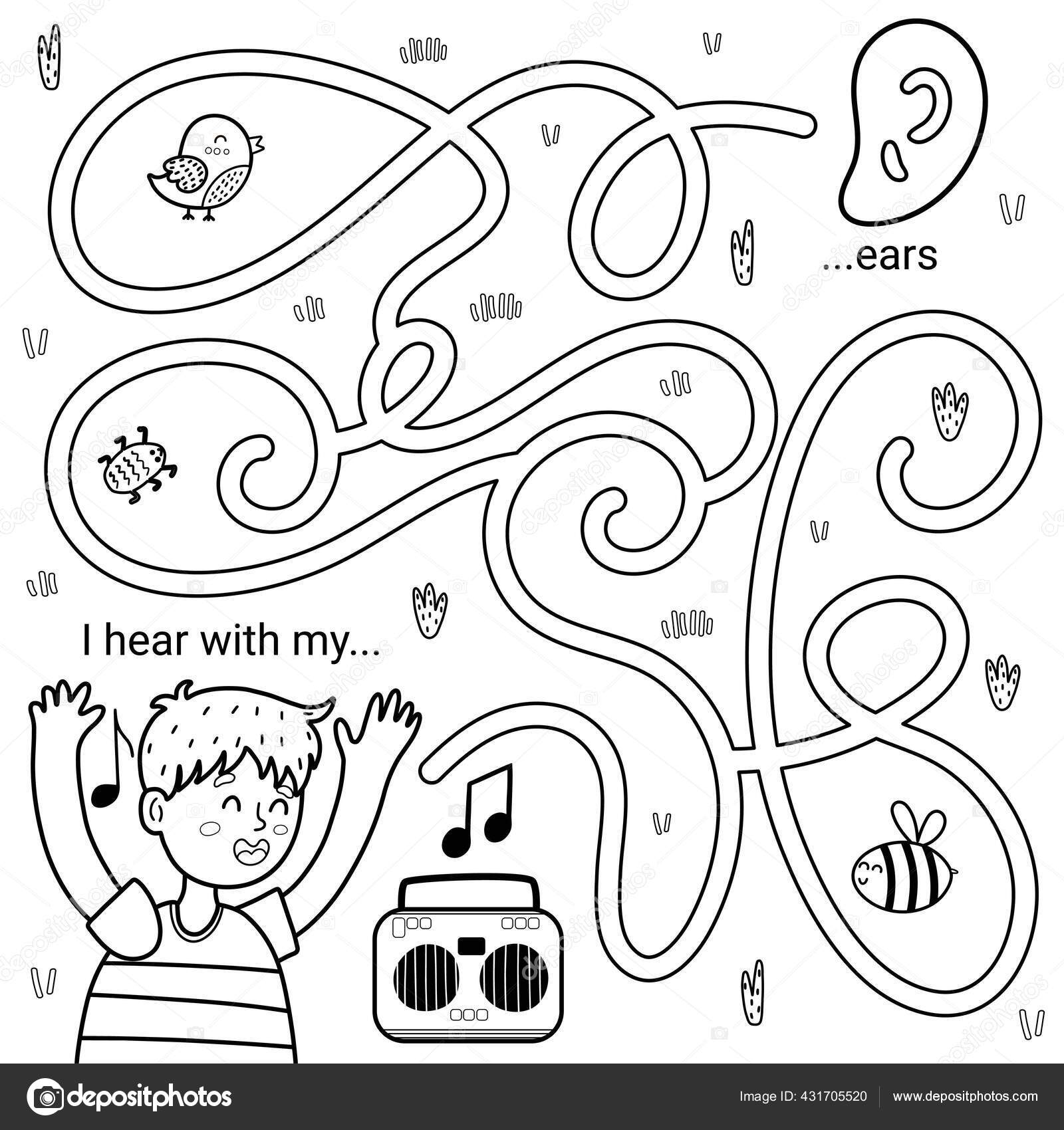 I Can Hear With My Ears Black And White Maze Game For Kids Five Senses Labyrinth Vector Image By C Juliyas Vector Stock 431705520