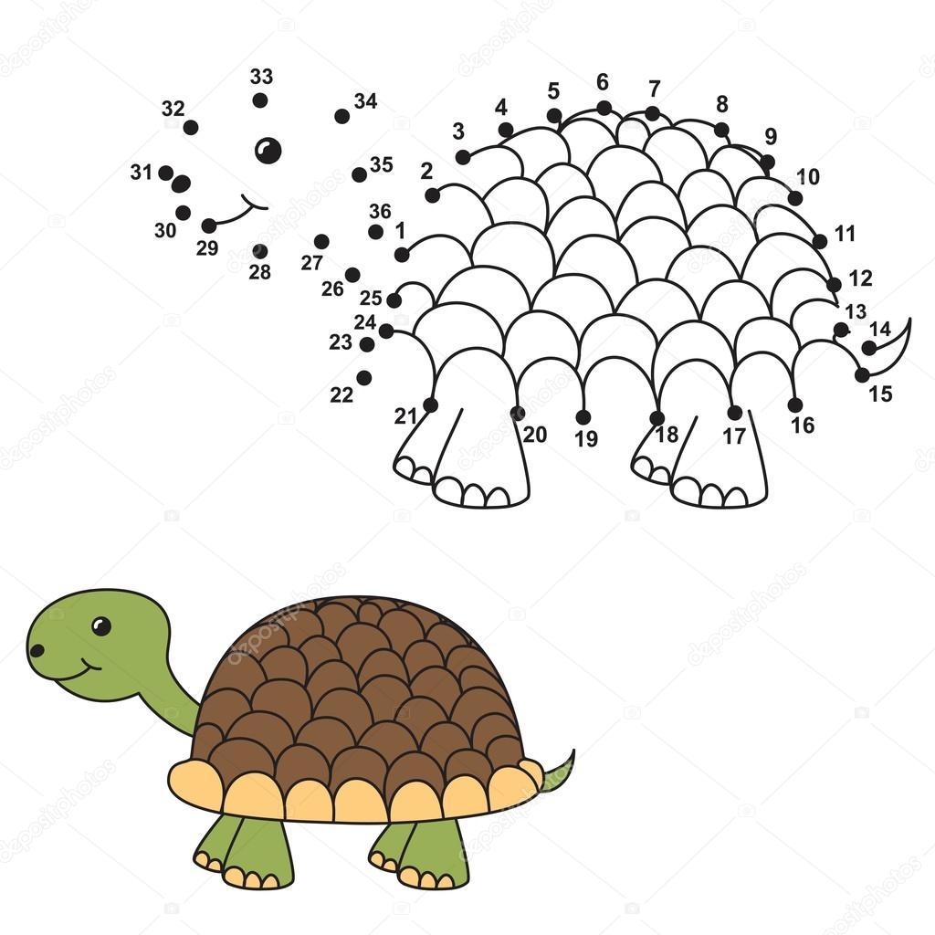 Conecte los puntos para dibujar la tortuga Linda y colorearlo ...