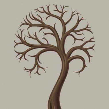 Deciduous tree trunk low