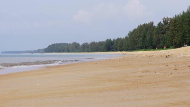 Letní panorama beach