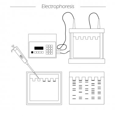 electrophoresis outline icon