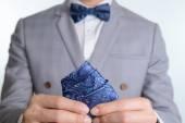 grey suit plaid texture, bowtie, pocket square