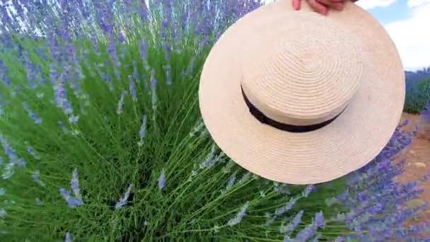 Frühlingskonzept. Frauenhut berührt Lavendelblüten in Zeitlupe -Video.